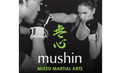 Mushin Mixed Martial Arts